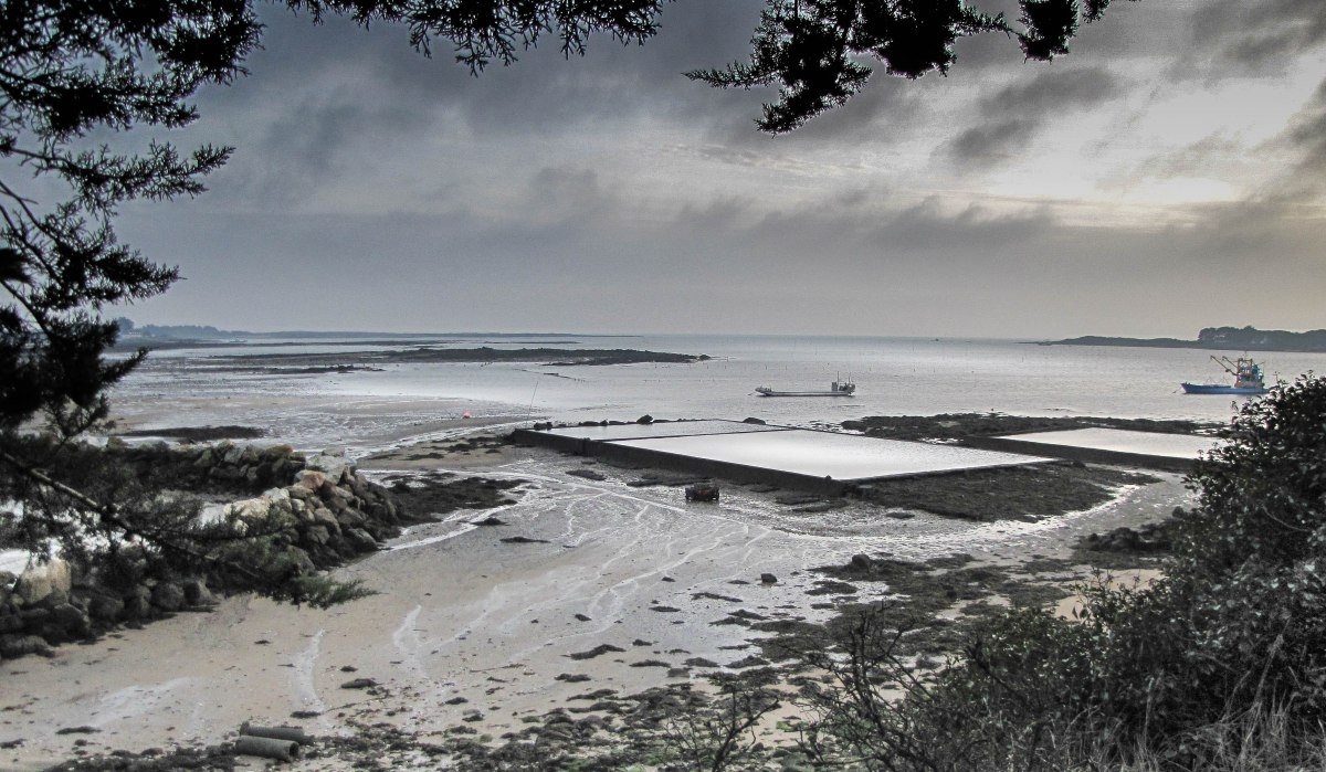 Baie de St Philibert, 30 déc 10 (1 sur 1).jpg