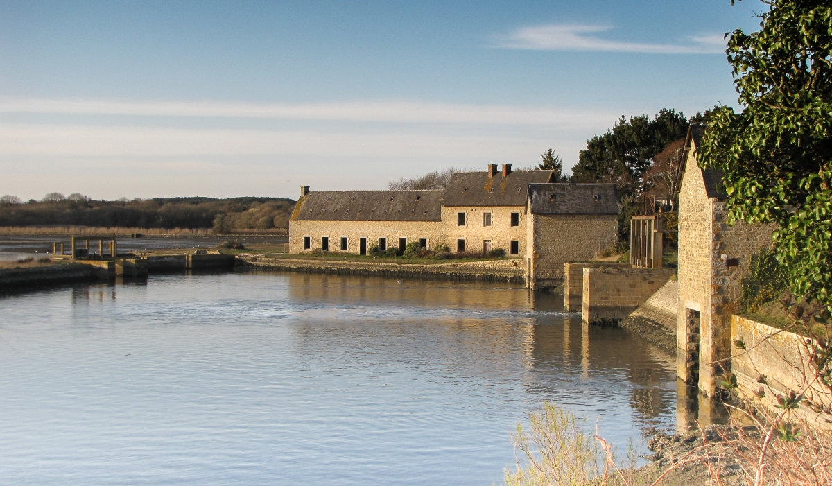 kerisan, rivière d'Auray, 11 mars 11 (1 sur 1).jpg