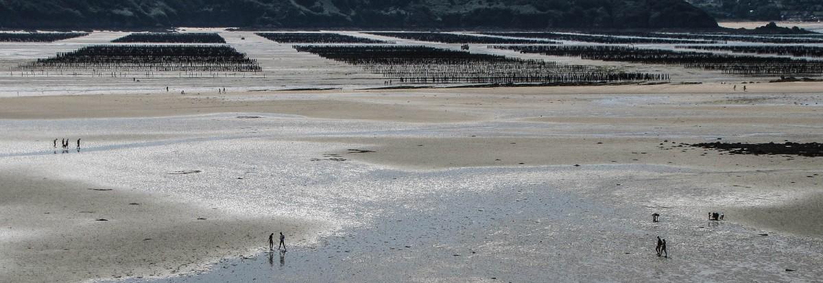 Baie de l'Aiguillon, st jacut, 3 juil 11 (1 sur 1).jpg