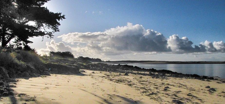 la petite plage privée, 9 févr.16 (1 sur 1).jpg