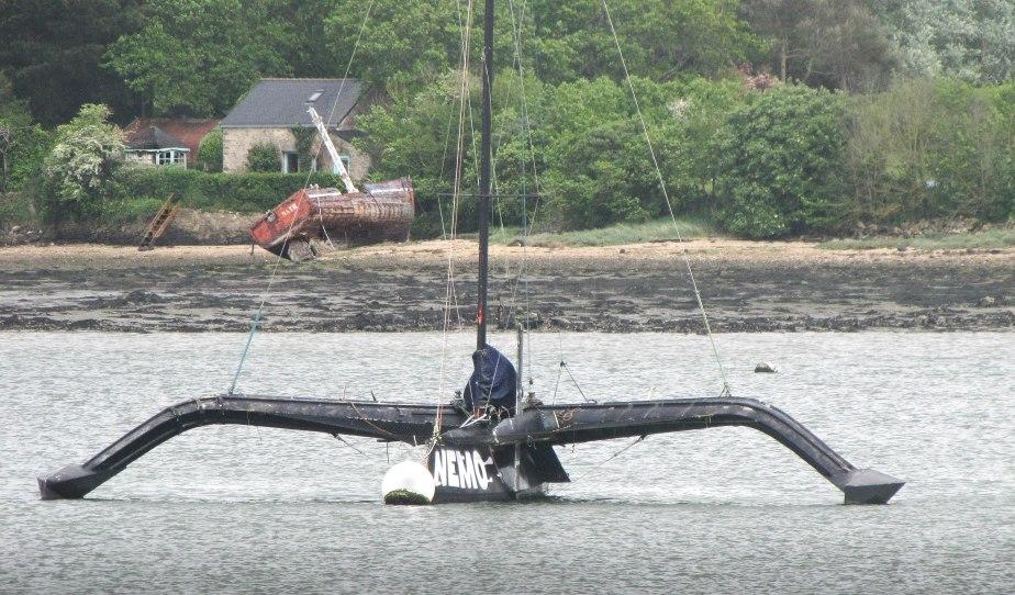 le grand oiseau noir & l'épave,  rivière d'auray, 6 mai 14 (1 sur 1).jpg