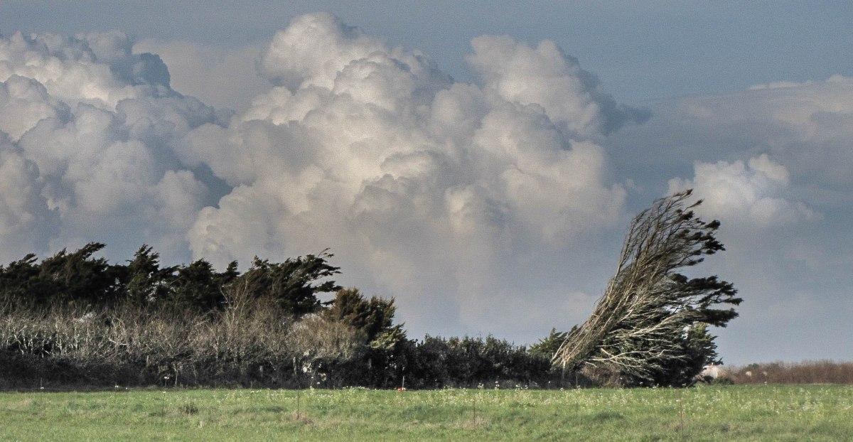 le pays du vent, baie d'audierne, 23 mars13 (1 sur 1).jpg