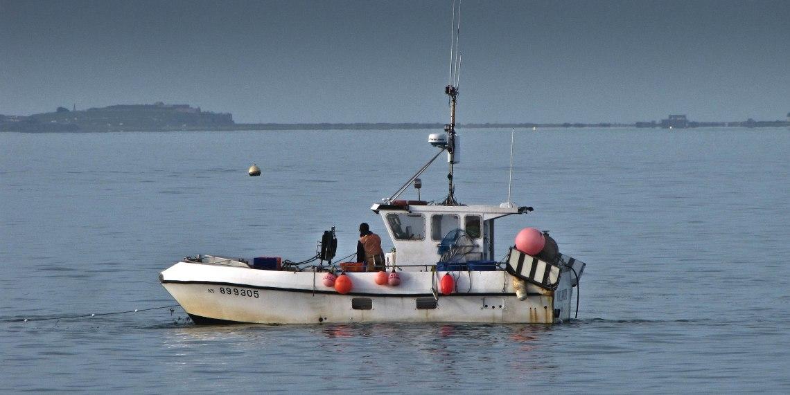 p'tite pêche matinale Baie de quiberon 4.jpg