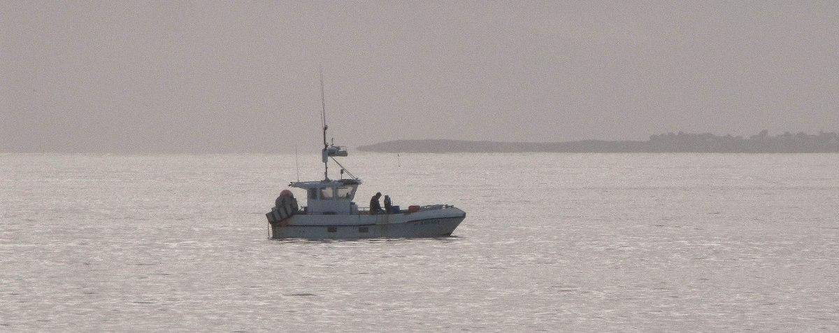 p'tite pêche matinale Baie de quiberon 5.jpg