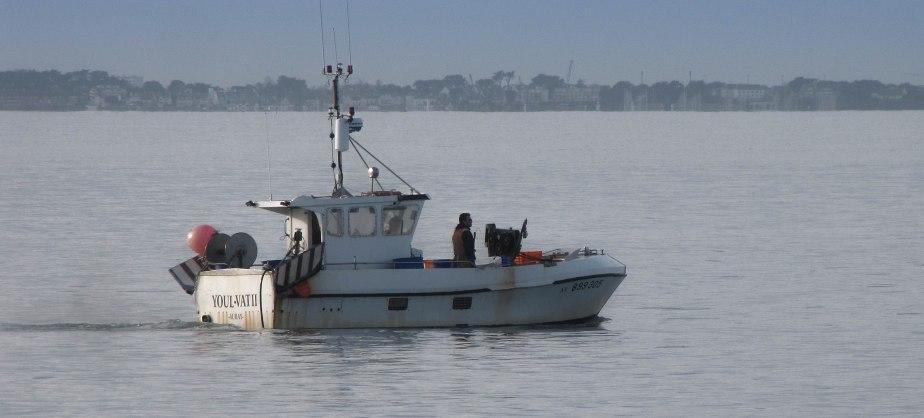 p'tite pêche matinale Baie de quiberon 8