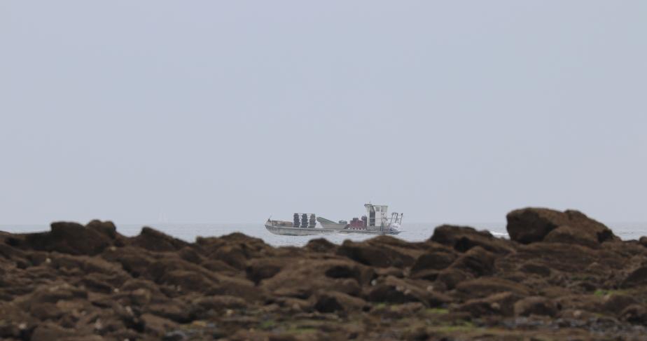 barge la Houle devant Méaban 3, Locmariaquer,  9 avril 18 (1 sur 1).jpg