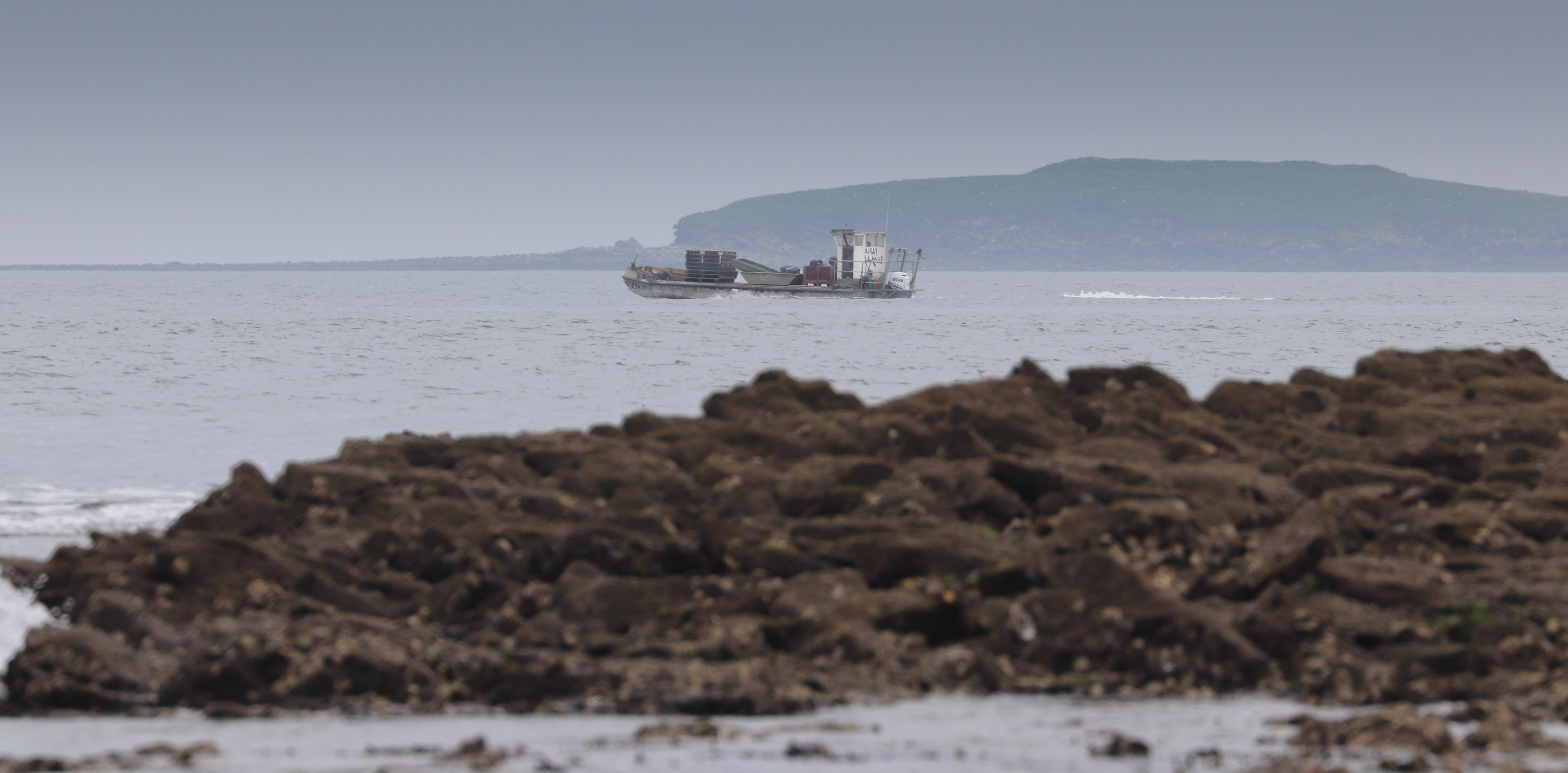 barge la Houle devant Méaban, Locmariaquer,  9 avril 18 (1 sur 1).jpg