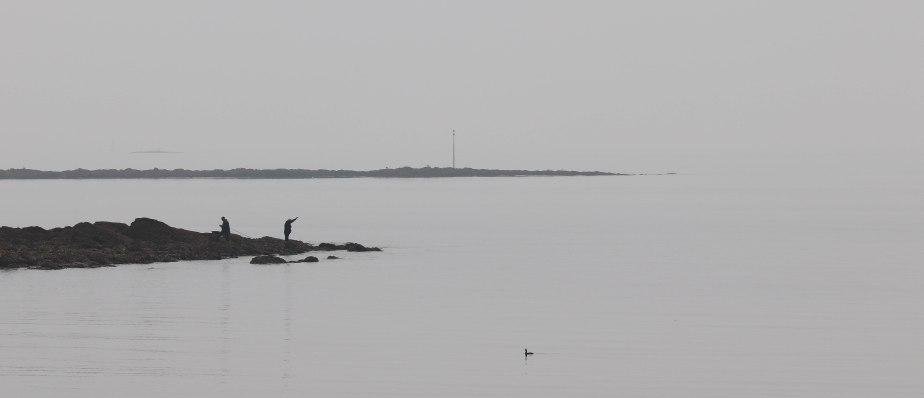 la pêche au cormoran zen breton 4, Pointe er Hourèl, 13 avril 18 (1 sur 1).jpg