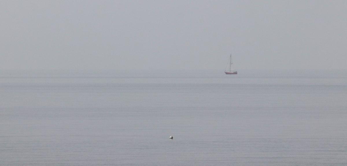 la pêche au cormoran zen breton 5, Pointe er Hourèl, 13 avril 18 (1 sur 1).jpg