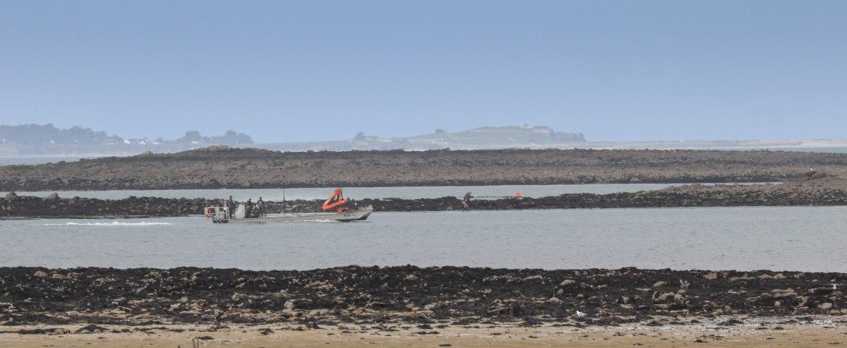 les travailleurs dans la mer 2, 16 avril 18 (1 sur 1).jpg