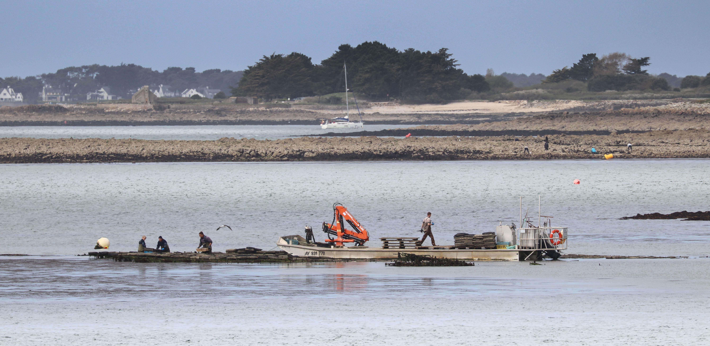 les travailleurs dans la mer 5, 16 avril 18 (1 sur 1).jpg