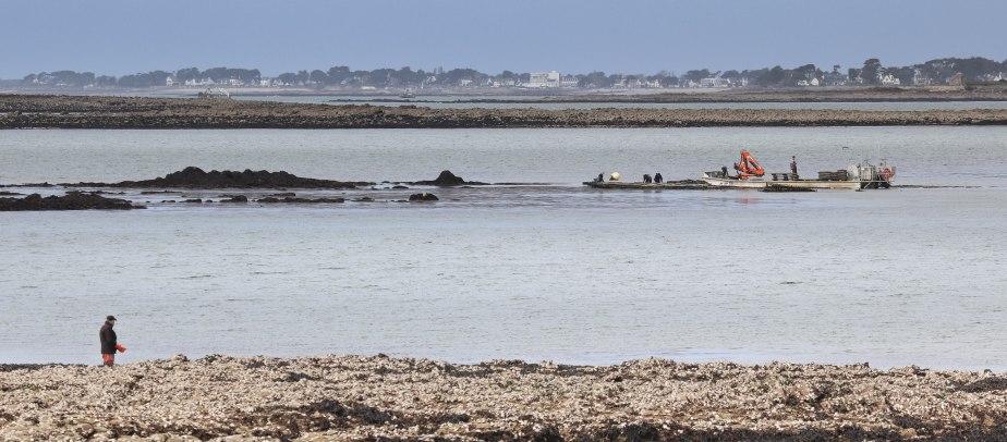 les travailleurs dans la mer 6, 16 avril 18 (1 sur 1).jpg
