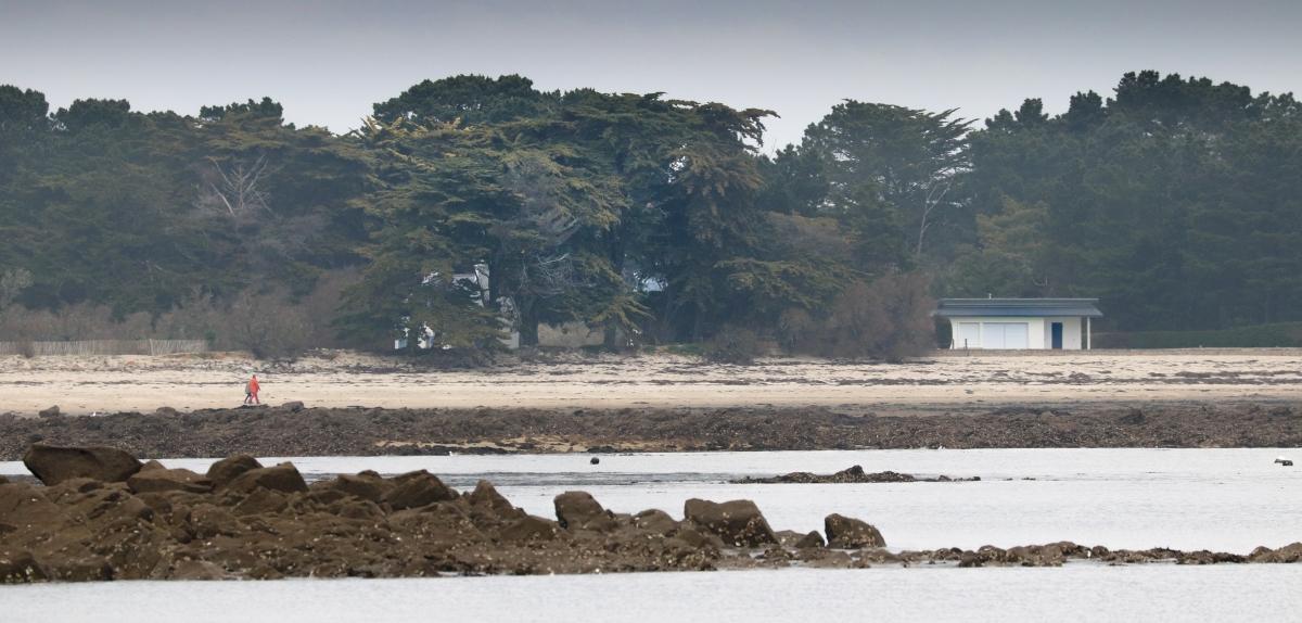 Nous aurions une maison sur la plage..., 9 avril 18 (1 sur 1).jpg