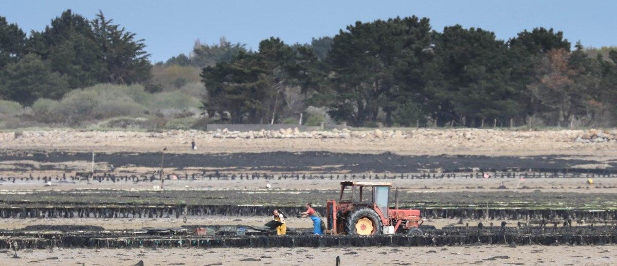 paysans du littoral 5, 16 avril 18 (2 sur 2).jpg