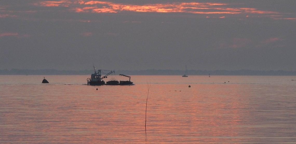 barge rentrant au sor à st philibert , 2 nov 17 (1 sur 1)