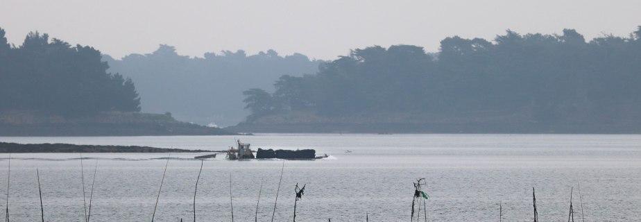 barge devant Radenec et l'Île Longue, Rivière d'Auray, 9 juin 18 (1 sur 1)