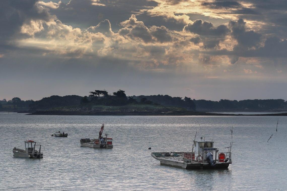 les barges attendent le boulot, Rivière d'Auray, Locmariaquer, 9 juin 18 (1 sur 1).jpg