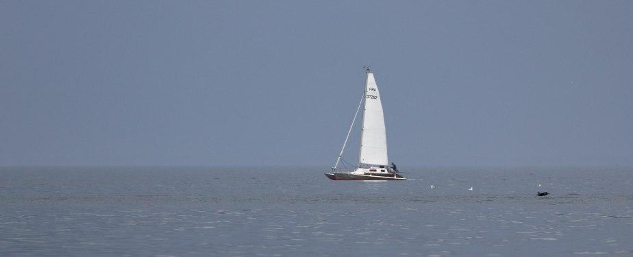 Baie de quiberon, 3  juin 18, 9h30 (1 sur 1).jpg