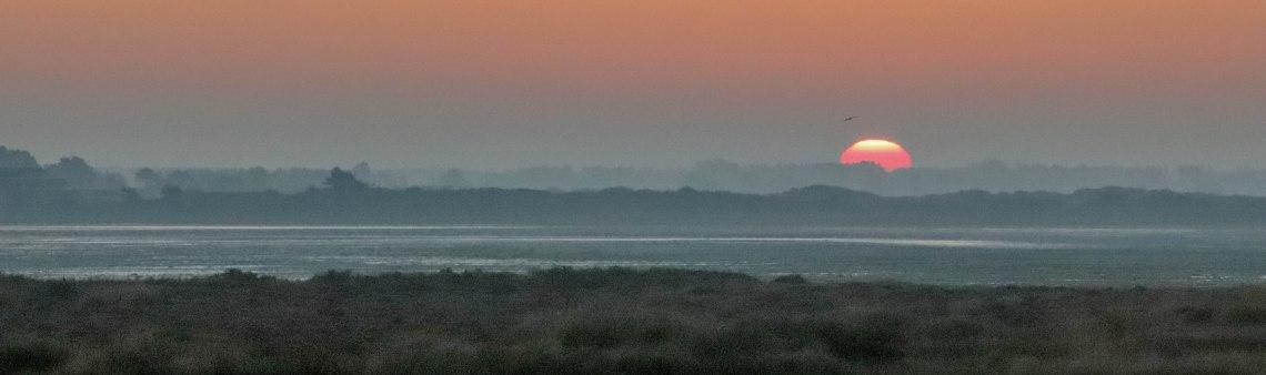 au bout de la Petite mer de Gâvres, 21 oct 18, 7h43-00 (1 sur 1).jpg