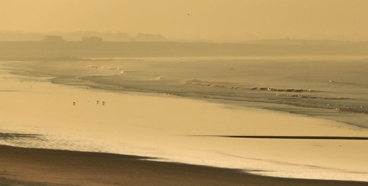 plage de lines, 21 oct 18, 8h14 (1 sur 1)