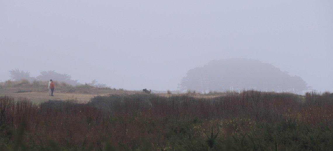 Maîtres & chiens,dune de st pierre, 27 déc.18 (1 sur 1).jpg