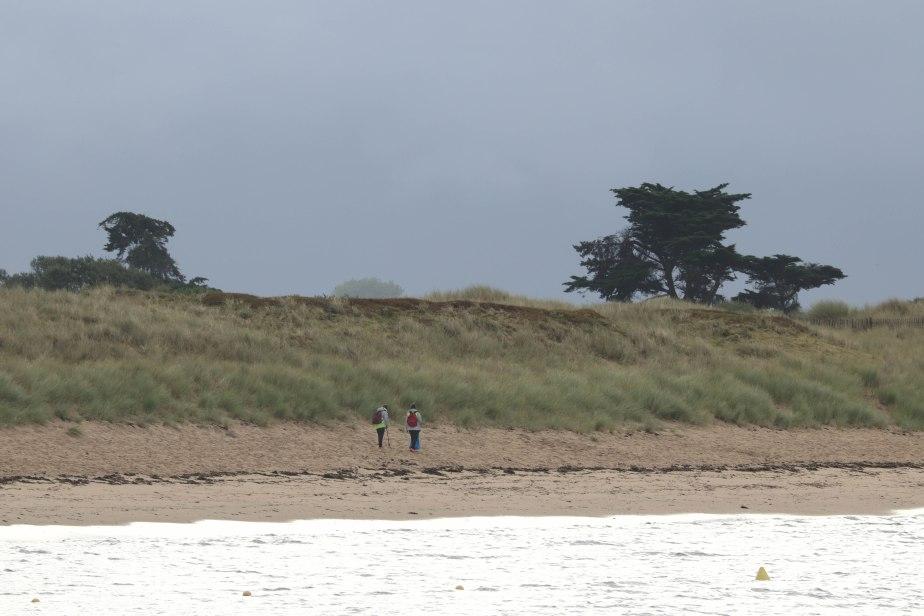 nettoyeuses de plage, st pierre, 13 août 18, 7h46 (1 sur 1).jpg