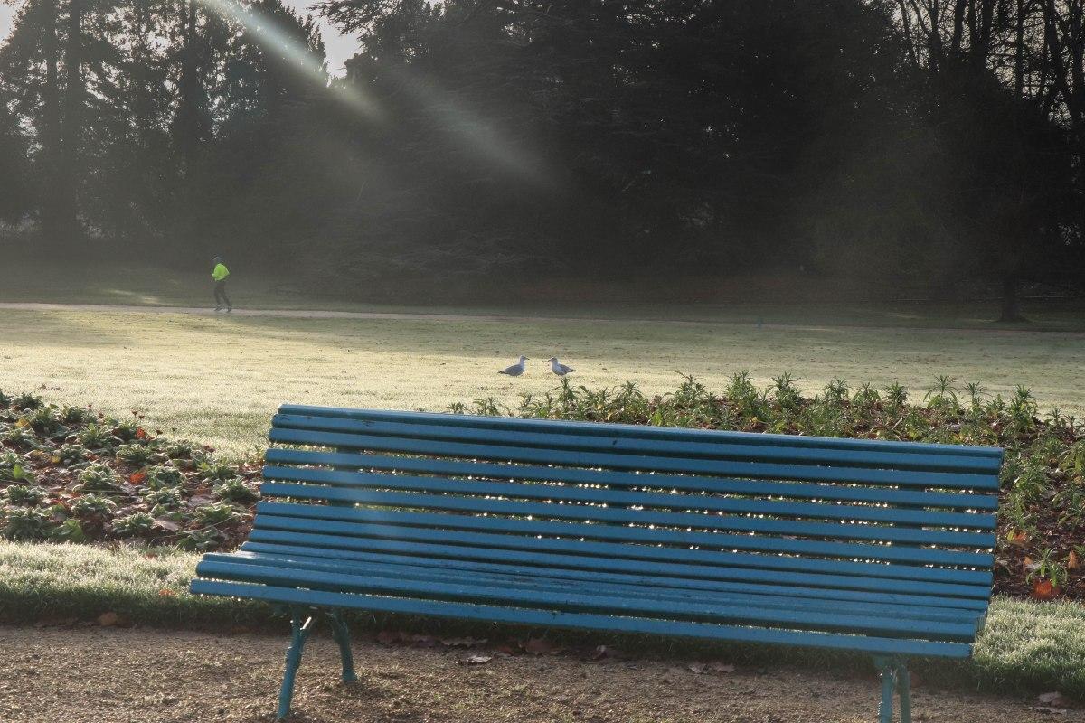 parc du Thabor, rennes, 16 déc.18, 10h21 (1 sur 1).jpg
