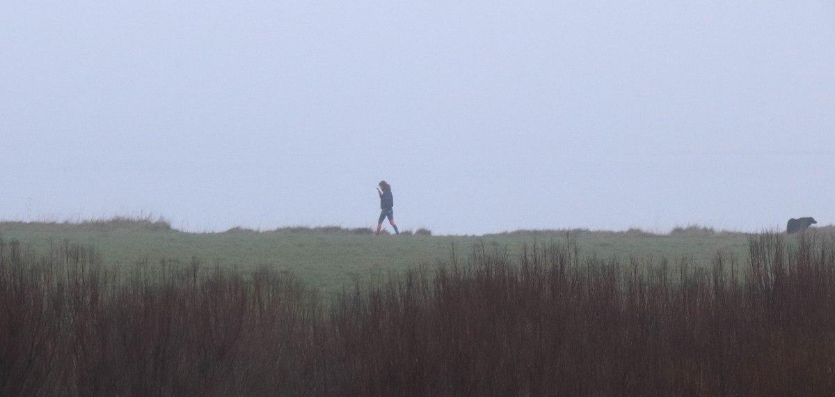 promeuse joggeuse et ses chiens, pointe er long, 27 déc.18 (1 sur 1)