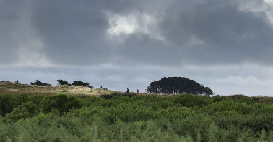 sur la dune, st pierre, 13 août 18, 7h56 (1 sur 1).jpg