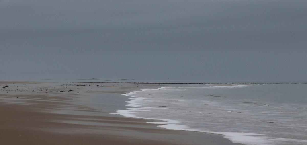 Plage st michel, les sables d'or, 6 févr 19, 11h46.jpg
