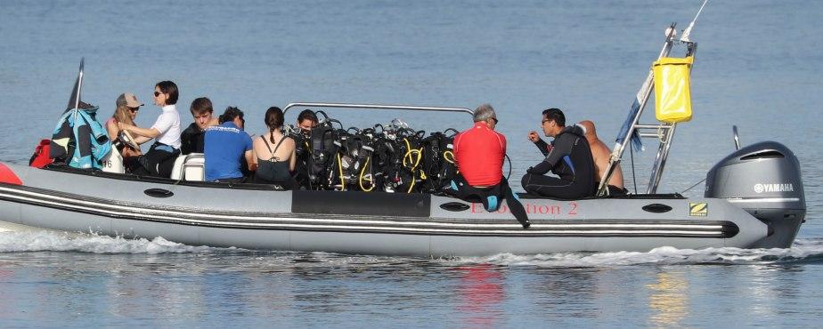 plongeurs, la trinité sur mer, 6 août 18, 8h25 (1 sur 1).jpg