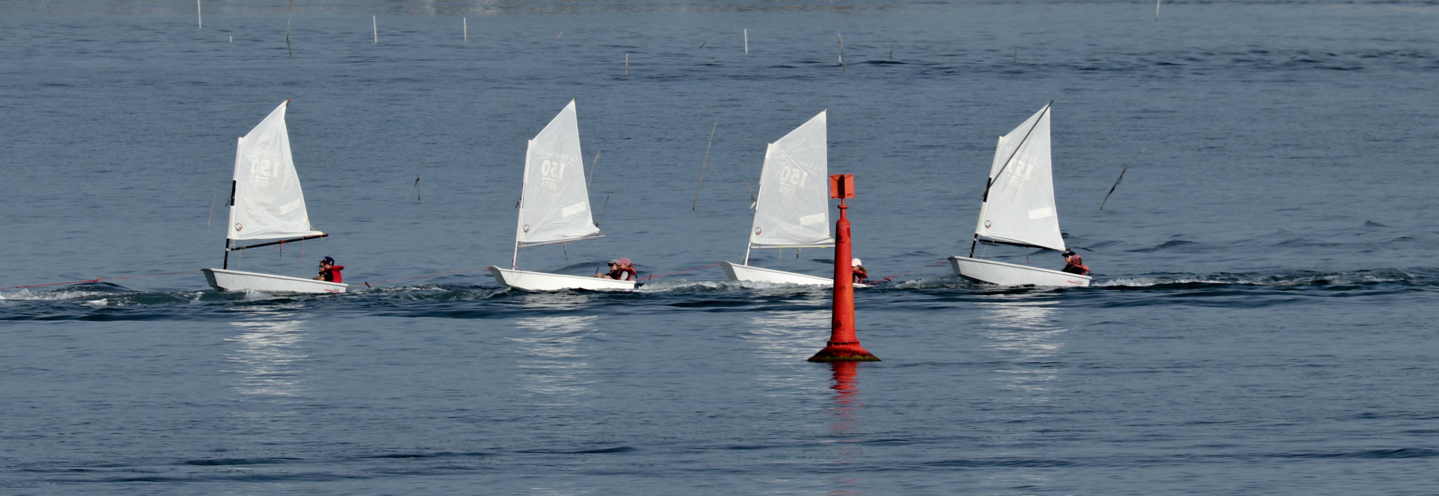 ribambelle, la trinité s-mer, 6 août 19, 8h59-08.jpg
