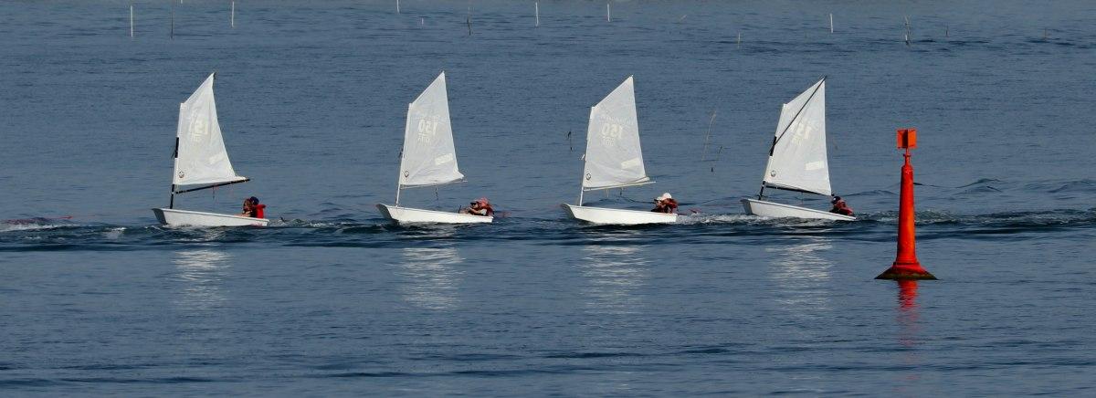 ribambelle, la trinité s-mer, 6 août 19, 8h59-10.jpg
