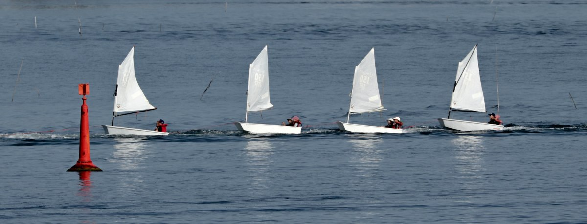 ribambelle, la trinité s-mer, 6 août 19, 8h59.jpg