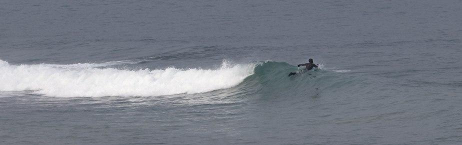 surfeur, sables d'or, 6 févr 19, 12h42