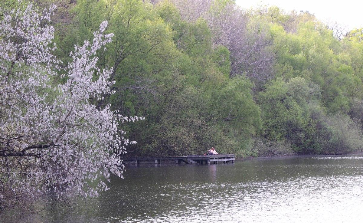 étang de la corbière, 19 avr 19, 16h42.jpg