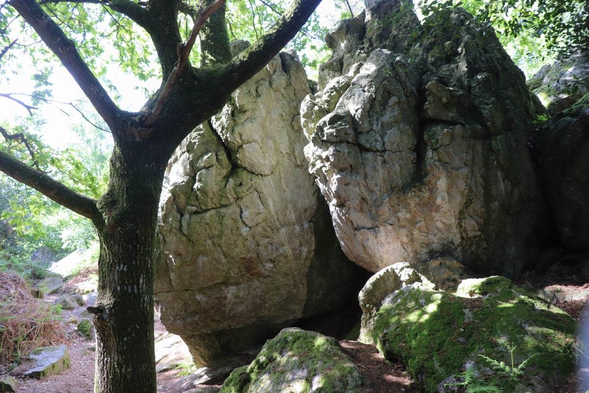 la roche piquée forêt de st aubin du cormier 12 mai 19.jpg