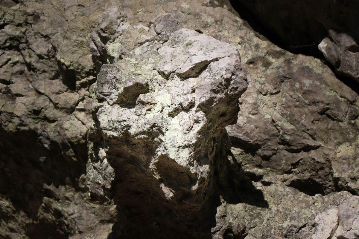 tête de mort la roche piquée forêt de st aubin du cormier 12 mai 19.jpg