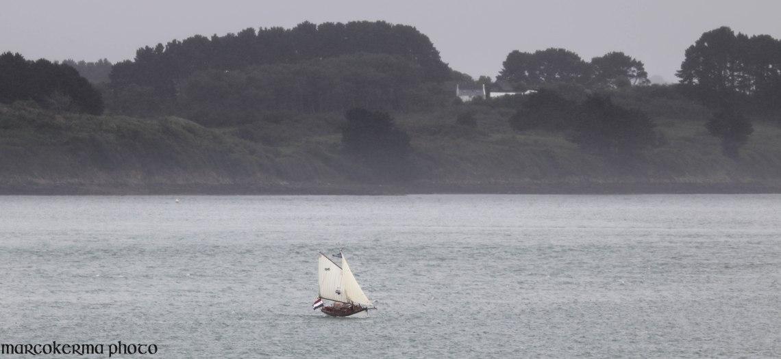 régate devant l'île aux Moines, Golfe du Morbihan, 9 juin 19, 16h35.jpg