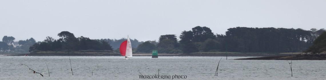 voilier devant Holavre, Golfe du Morbihan, 9 juin 19, 15h58.jpg