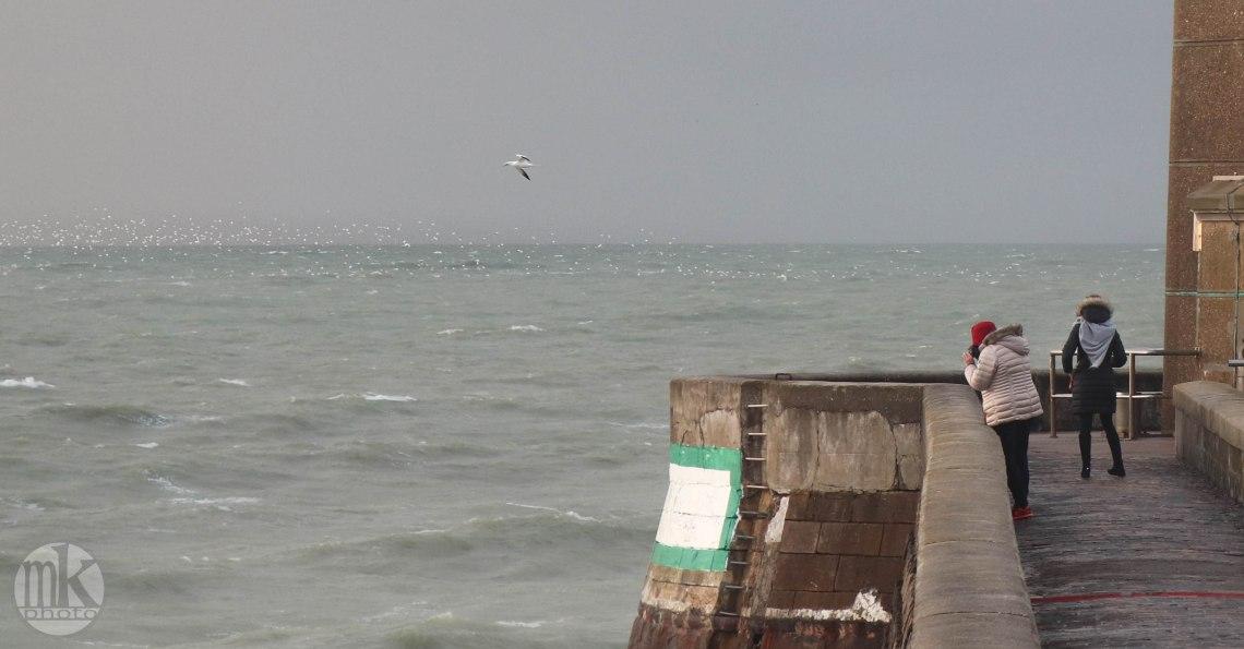 Fécamp, l'entrée du port, 22 déc 19, 17h12-15 (zoom).jpg