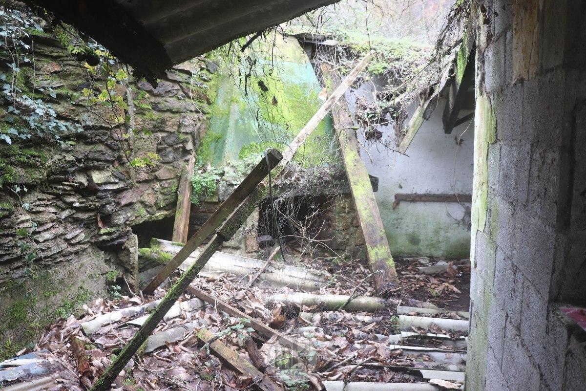 moulin du Boël, vestiges de la carrière, 2ème, 7 mars 2020, 14h29
