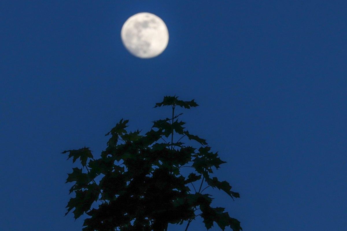 lune, la Binquenais, 5 mai 2020, 21h23-34
